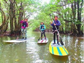 [沖繩西表島】★流行的特殊課程!紅樹林SUP,例如一天整個叢林探險之旅