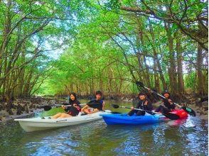 [沖繩西表島]紅樹獨木舟和淋浴徒步旅行(瀑布遊)