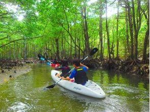 [โอกินาวา Iriomote เกาะ] ★แน่นอนโลภที่นิยม! 1 วันทัวร์ทั้ง Iriomote ผจญภัยในป่าของภาพในการพายเรือแคนู