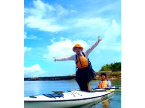 【鹿児島・屋久島】世界遺産の神秘的な世界を体感しよう!シーカヤック体験(1日コース)の画像
