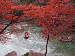 【群馬・水上】利根川ラフティング体験(半日コース)の画像