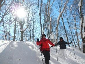 【長野・野尻湖】眺望抜群!スノーシュー体験(袴岳ブナの森コース)の画像
