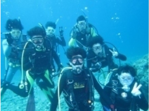 [Iwate-Sanriku] Open Water Diver Course (diving license)の紹介画像