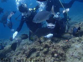 【沖縄】沖縄で体験ダイバーデビュー、選べる2コース青の洞窟orサンゴの花畑へ!【ダイビング】