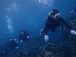 【沖縄】学割プラン、2名様~沖縄ダイバーデビュー選べる2コース青の洞窟orサンゴの花畑【ダイビング】