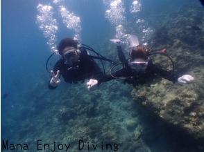【沖縄】沖縄の海でファンダイビング(2ビーチダイブ)
