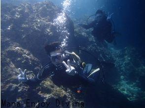 【沖縄】沖縄の海でファンダイビング(東海岸オリジナル2ボートダイブ)