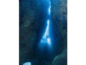 【新潟 佐渡 ダイビング】ファンダイビング 1ビーチの画像