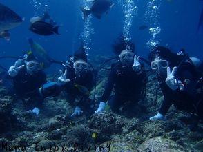 【沖縄】沖縄の海でメモリアルダイビング!記念日を最高の1日に!