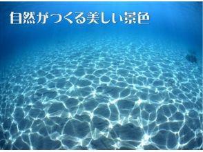 【佐渡・初心者向け!】体験ダイビング(3時間コース)の画像