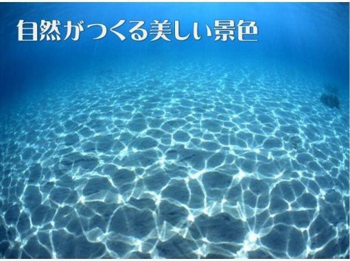 https://img.activityjapan.com/10/4374/10000000437401_nRdkIQUS_3.jpg?version=1589449715