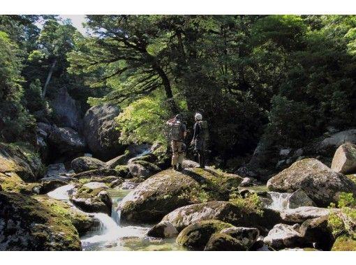 YNAC Yakushima outdoor activities Research Center
