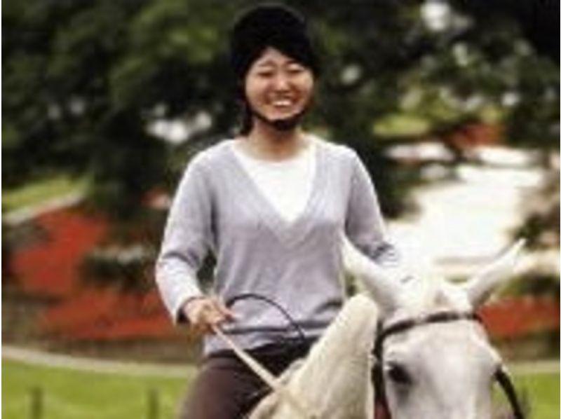 【宮崎・綾】初体験の方向け!乗馬体験(チャレンジコース)の紹介画像