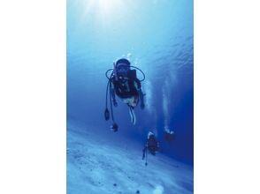 【宮崎・栄松海水浴場】スキューバダイビング体験プランの画像