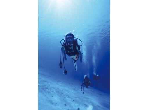 【宮崎・栄松海水浴場】スキューバダイビング体験プランの紹介画像