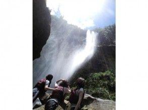 【西表島】ジャングルトレッキング(ピナイサーラの滝つぼ&滝うえコース)