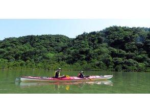 【西表島・秘境探検!】マングローブシーカヤック(ナーラ川支流コース)の画像