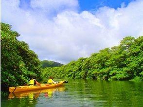 【沖縄・西表島】マングローブカヌー&パナリ島シュノーケリングの画像