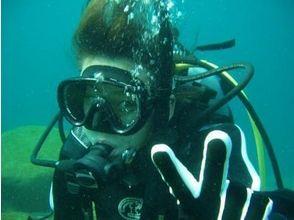 【神奈川・小田原】未経験者、初心者向け!体験ダイビング(1ダイブコース)の画像