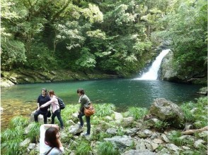 【鹿児島・奄美大島】1day・Bコース・マテリアの滝&マングローブカヌーツーリング