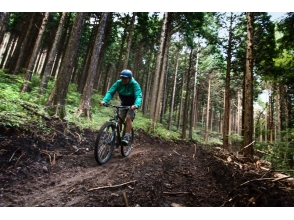 【Hakone】 Wild the Trail cruise course 【MTB】 picture