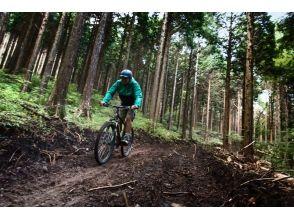 【Hakone】 Wild the Trail cruising course 【MTB】