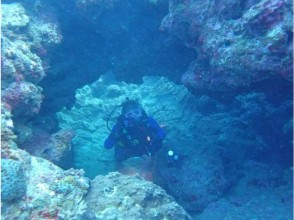 [Okinawa Onna] fan diving blue cave course of