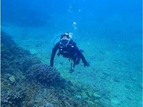 【沖縄・恩納村】体験ダイビング&シュノーケル 熱帯魚コース