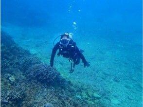【沖縄・恩納村】ファンダイビング 熱帯魚コース