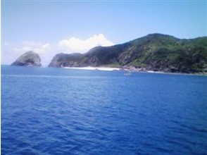 [沖繩/那霸]慶良間潛水(1天,船/ 3潛)的圖像