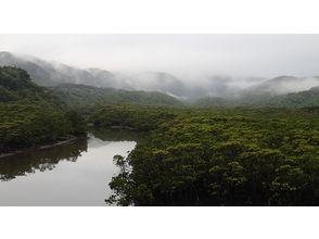 【沖縄・西表島】たっぷり堪能できます マングローブカヤッキング1日ツアー【カヤック】
