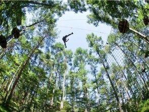 【山梨・富士山】森を遊びつくす!フォレストアドベンチャー(アドベンチャーコース)※団体割引あり!の画像