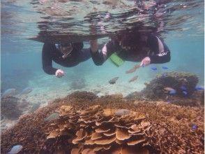 沖縄本島南部・糸満 自然海岸利用一組貸切お手軽シュノーケリングの画像