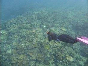【那覇市内まで送迎あり】沖縄本島南部・糸満 ボート使用楽々♪絶景大サンゴ群シュノーケリング