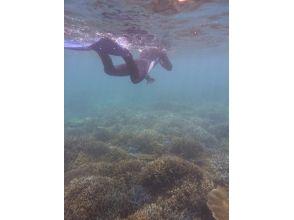 沖縄本島南部・糸満沖奇跡のサンゴ礁シュノーケリングの画像