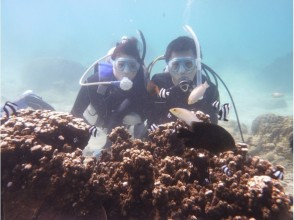 【那覇市内まで送迎あり】沖縄本島南部・糸満 自然海岸利用一組貸切お手軽体験ダイビング