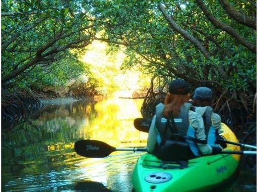 Kayak的免費服務套裝石垣島