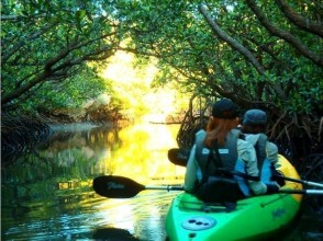 【Okinawa · Ishigakijima】 Completely private! Special discount for winter only! Image of Futogawa River Mangrove Canoe Tour (morning / afternoon)