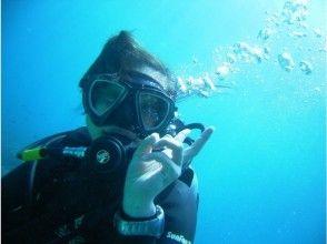 【四国・徳島】熱帯魚の楽園ぽっこり小島で体験ダイビングの画像