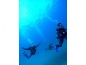 【四国・徳島】Cカード取得者限定!美しい海を堪能ファンビーチダイビング(2ビーチ)の画像