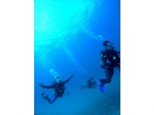【四国・徳島】Cカード取得者限定!美しい海を堪能ファンビーチダイビング(2ビーチ)