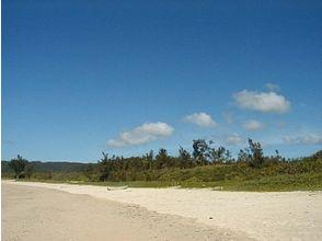 【沖縄・国頭郡】やんばるブルーを体験しよう!無人島(無人ビーチ)上陸シュノーケリングツアー(1日)