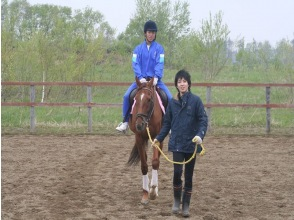 【北海道・南幌】引き綱乗馬コースの画像