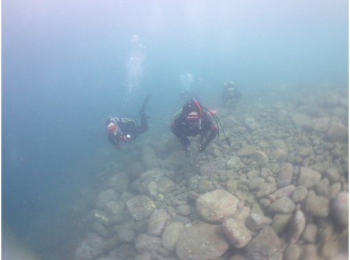 [Getting licenses Course] Let's become a diver! SSI Open Water Diver Course (acquired in as little as 3 days)の紹介画像