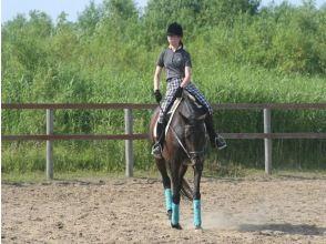 【北海道・南幌】体験乗馬コースの画像