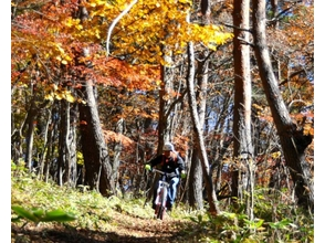 【Nagano Prefecture】 Enjoy the mountain! Image of MTB Trail Ride Guided Tour (plan for 1 person)