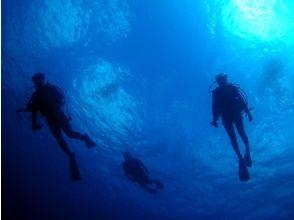 【体験ダイビング(初島)】海という名の大空へ!!体験ダイビングコース