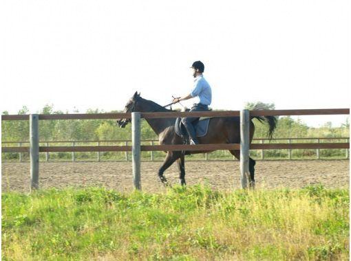 南幌町騎馬公園(南幌町騎馬PARK)