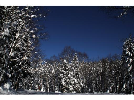 【北海道・オホーツク】プライベートツアー【1日コース・6時間】