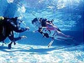 【東京】ダイビングをより長く楽しみたい方オススメ!ダイビング入門コース(ライセンス取得)